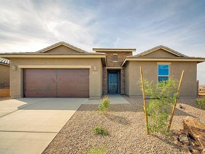 Sahuarita Single Family Home For Sale: 1292 E Stronghold Canyon Lane