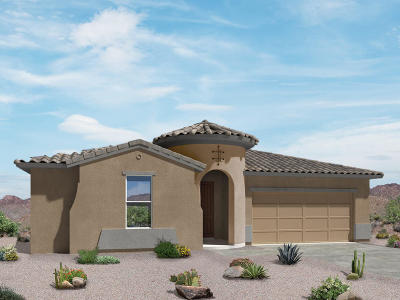 Sahuarita Single Family Home For Sale: 1302 E Stronghold Canyon Lane