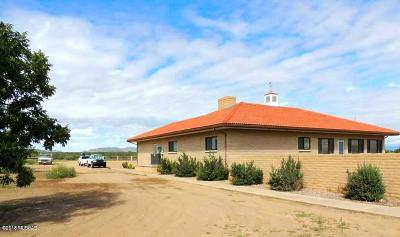 Cochise Single Family Home For Sale: 186 W Dragoon Road
