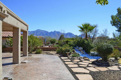 Oro Valley Single Family Home For Sale: 14351 N Alamo Canyon Drive