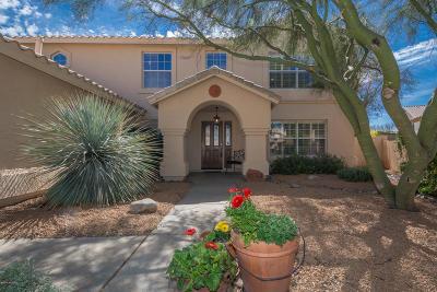 Tucson Single Family Home For Sale: 10744 N Torey Lane