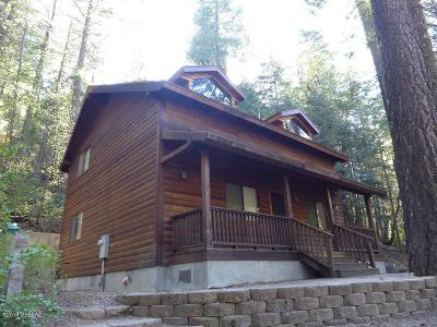 Mt. Lemmon Single Family Home For Sale: 10980 E Turkey Run
