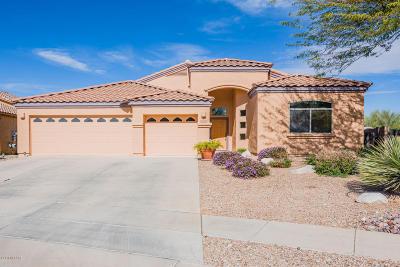 Vail AZ Single Family Home For Sale: $323,000