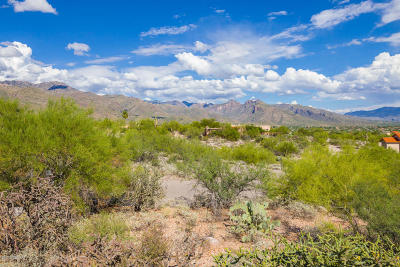 Tucson Residential Lots & Land For Sale: 6515 E Placita Elevada #319