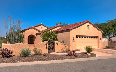 Tucson Single Family Home For Sale: 2754 S Desert Hawk Place