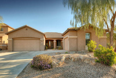 Marana Single Family Home For Sale: 3626 W Tailspin Place