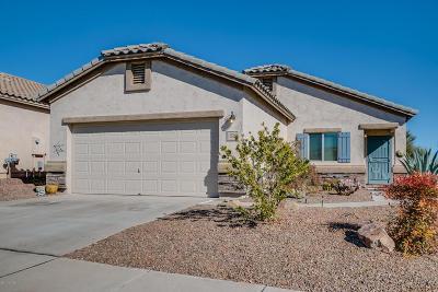 Sahuarita Single Family Home For Sale: 1328 W Via Cerro Colorado