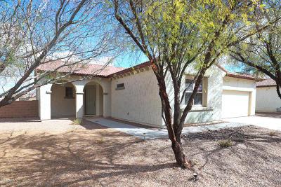 Marana Single Family Home Active Contingent: 12712 N Quinoa Drive