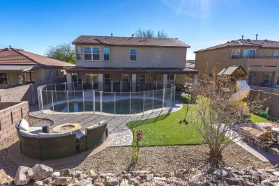 Vail AZ Single Family Home For Sale: $314,900