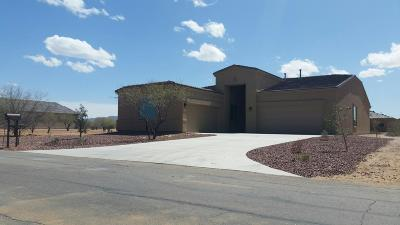 Tucson Single Family Home For Sale: 13277 W Tiger Aloe Place W