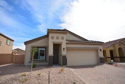 Marana Single Family Home For Sale: 9047 W Grayling Drive