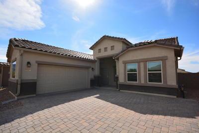 Marana Single Family Home For Sale: 9625 N Hebden Way