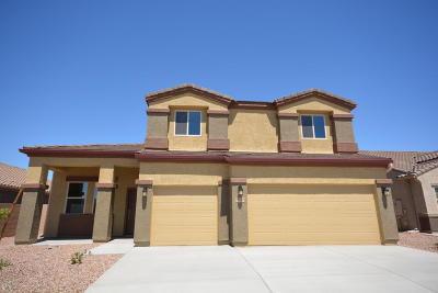 Marana Single Family Home For Sale: 9842 N Buzzing Bee Trail