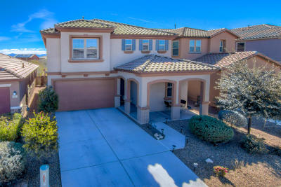Sahuarita Single Family Home For Sale: 919 W Camino Nogal Blanco