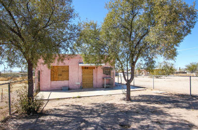 Pima County Single Family Home For Sale: 5826 S Park Avenue