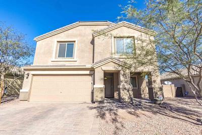 Marana Single Family Home For Sale: 8748 W Atlow Road