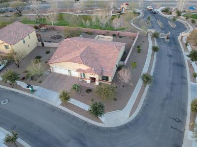Sahuarita Single Family Home For Sale: 142 W Vuelta La Penca