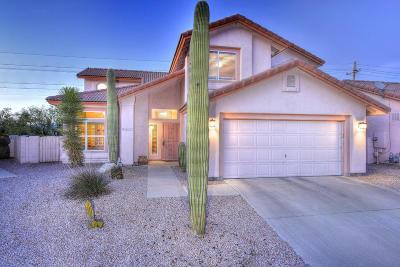 Tucson Single Family Home Active Contingent: 3770 W Mesa Ridge Trail