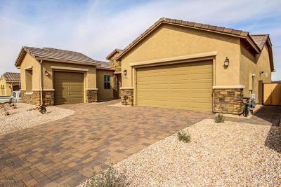 Marana Single Family Home For Sale: 11795 N Renoir Way