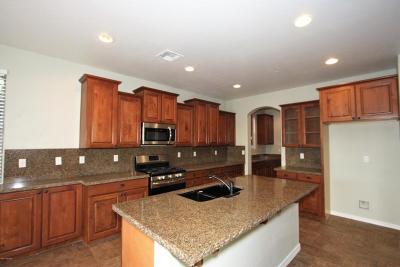 Marana Single Family Home For Sale: 12871 N Honey Bell Drive