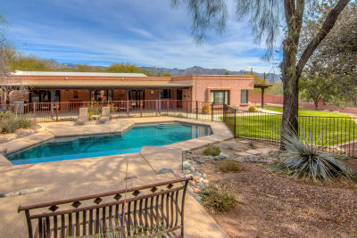 Tucson Single Family Home For Sale: 3901 N Ridgewood Place