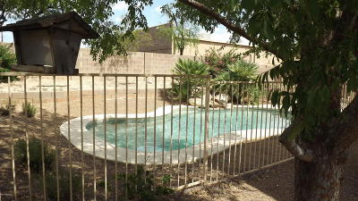 Tucson Single Family Home For Sale: 4962 N Sabino Gulch Court