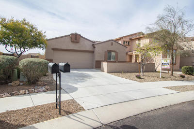 Single Family Home Active Contingent: 1243 W Cherasco Way