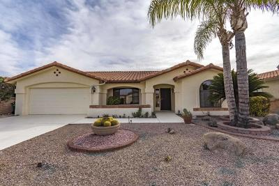 Oro Valley Single Family Home For Sale: 1028 E Coachwood Drive