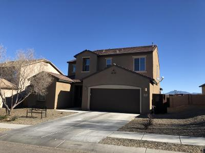 Vail Single Family Home For Sale: 591 S Desert Haven Road