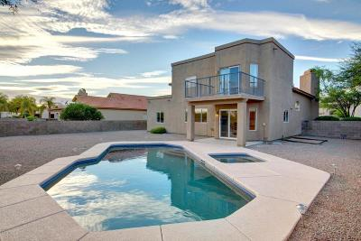 Tucson Single Family Home For Sale: 341 W Ajax Peak Road