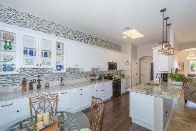 Marana Single Family Home For Sale: 13195 N Pier Mountain Road