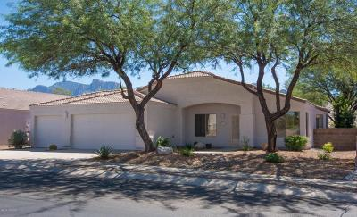 Oro Valley Single Family Home Active Contingent: 519 W Silvertip Road