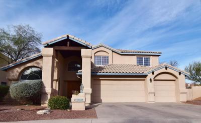 Tucson Single Family Home For Sale: 10739 N Sundust Court
