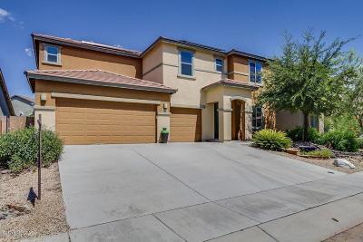 Sahuarita Single Family Home For Sale: 1069 E Pecan Orchard Loop