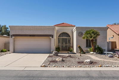 Saddlebrooke Single Family Home For Sale: 38060 S Desert Star Drive