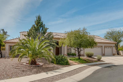 Oro Valley Single Family Home Active Contingent: 2007 W Silver Rose Place