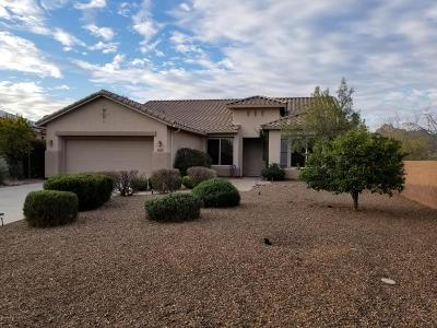 Continental Ranch Sunflower Single Family Home Active Contingent: 9841 N Sunflower Park Drive