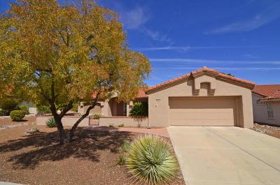 Oro Valley Single Family Home For Sale: 1043 E Desert Glen Drive