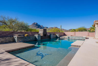 Tucson Single Family Home For Sale: 8439 N Ironwood Reserve Way