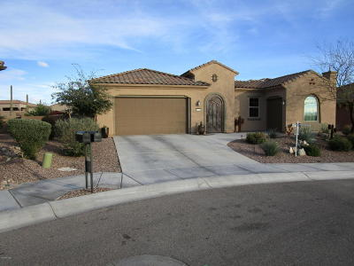 Marana Single Family Home For Sale: 6533 Grandview Trail
