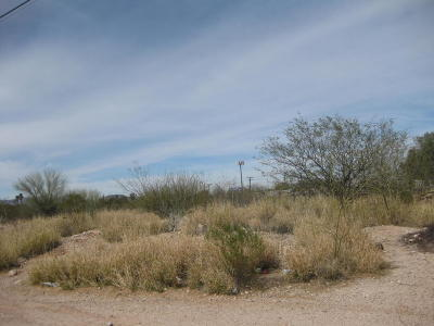 Tucson Residential Lots & Land For Sale: 5065 S Tucson Boulevard