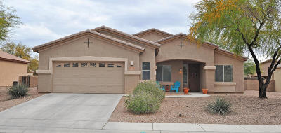 Marana Single Family Home For Sale: 11525 W Amber Stone Drive