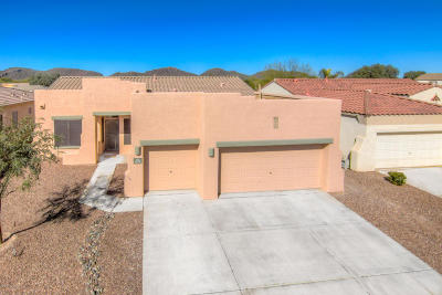 Tucson Single Family Home For Sale: 9329 N Indian Summer Drive