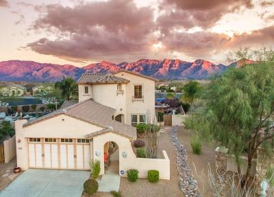 Single Family Home Active Contingent: 13360 N Piemonte Way