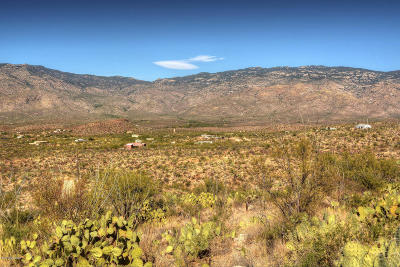 Residential Lots & Land For Sale: 18000 E Gila Monster Way