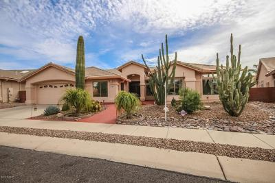 Oro Valley Single Family Home For Sale: 11032 N Canada Ridge Drive