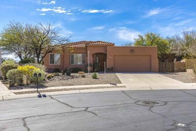 Tucson Single Family Home For Sale: 3614 N Raven Wash Drive