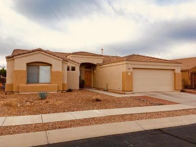 Oro Valley Single Family Home For Sale: 313 W Ridge Peak Road