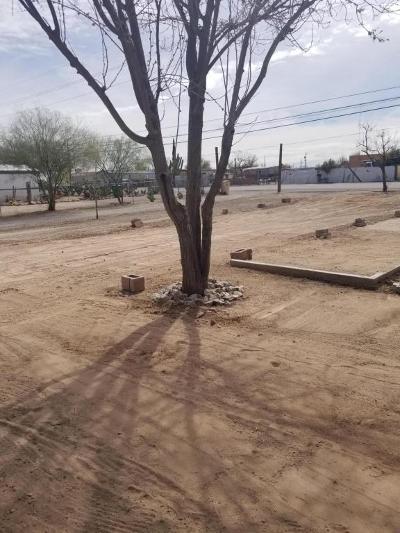 Tucson Residential Lots & Land Active Contingent: 3333 E Drexel Road #4