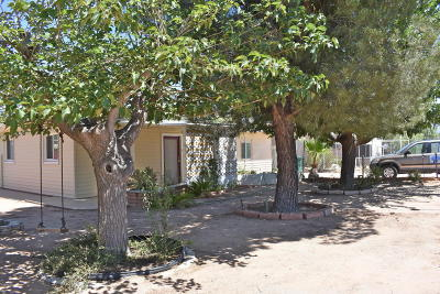 Single Family Home For Sale: 16310 N Avenida Del Oro